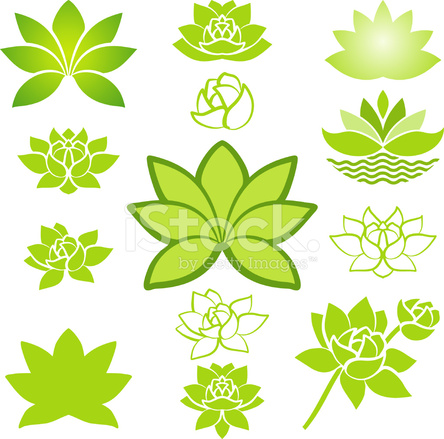Green Lotus Collection Stock Vector Freeimagescom