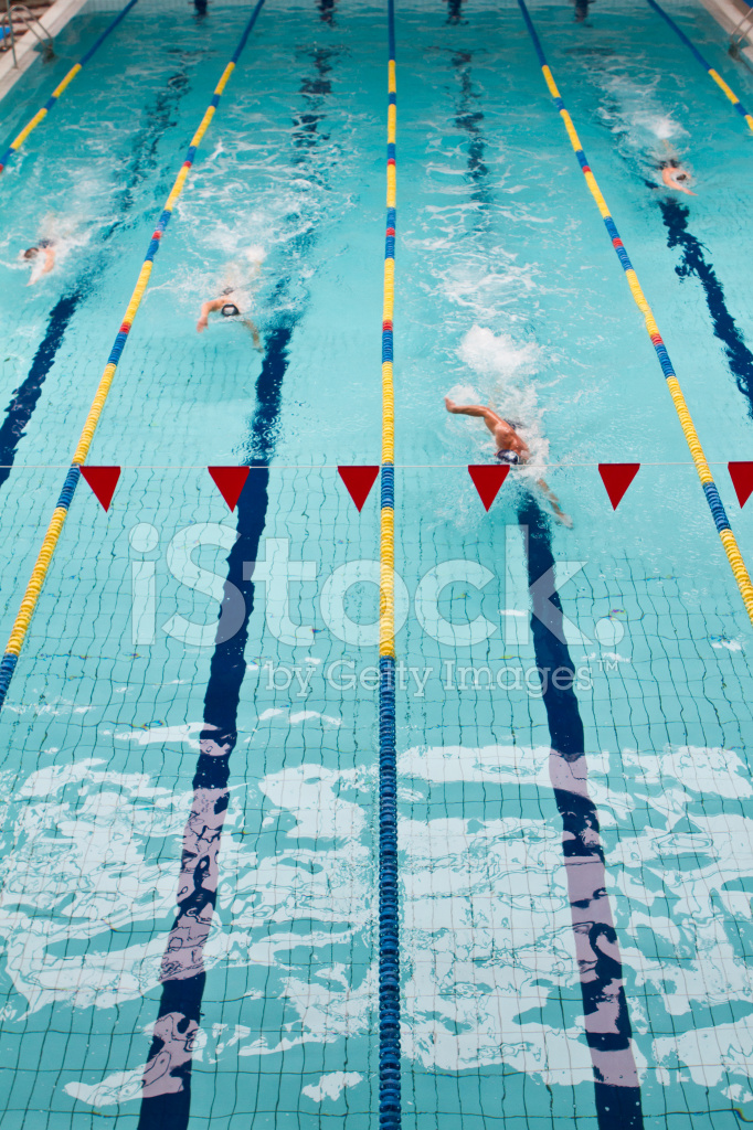 Swimming Competition In Pool Stock Photos