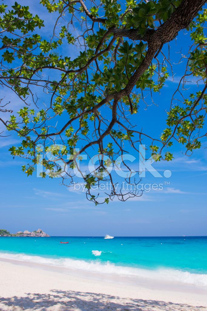 美丽的大海,在普吉岛, 攀牙湾 泰国 正版照片 - free.