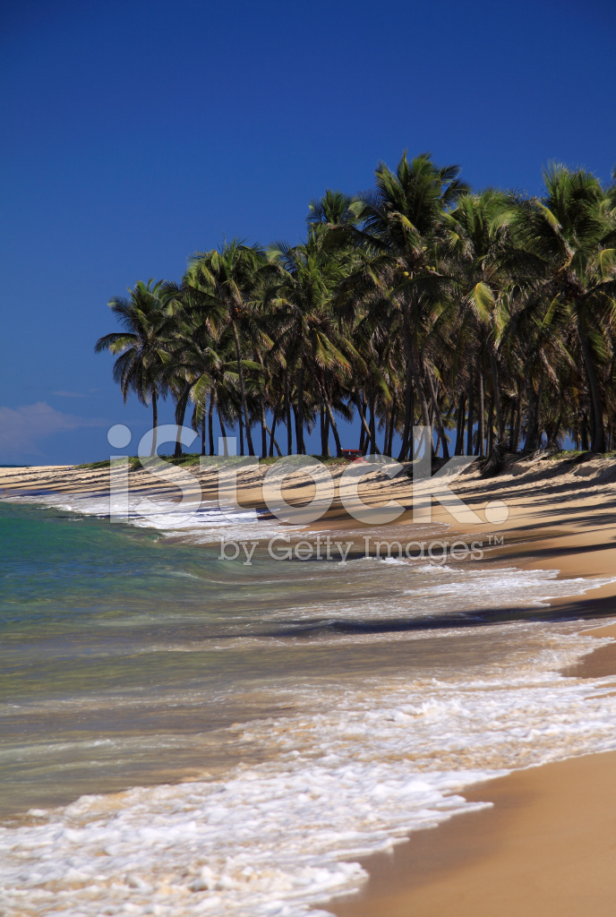 Spiaggia Di Gunga, Maceio, Nord Est Del Brasile Fotografie stock ...