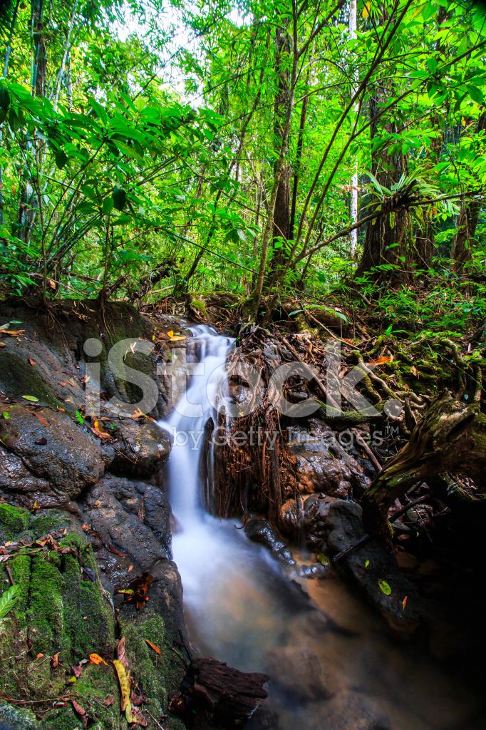 Waterfall Sra Nang Manora Forest Park Waterfall Stock