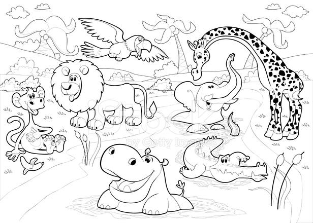 Раскраски животных в джунглях