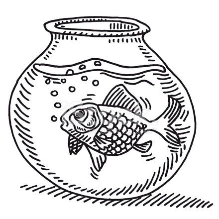 Gold Fish Bowl Water Drawing Stock Vector Freeimages Com