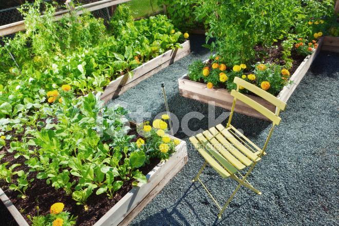 Home Garden Raised Beds 2