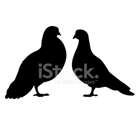 Set of Dove Silhouettes Stock Vector - FreeImages com