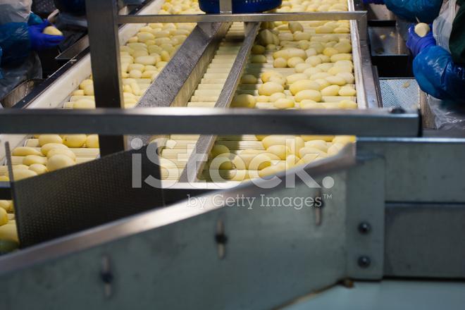 Конвейер с картошкой в элеватор аварс цена