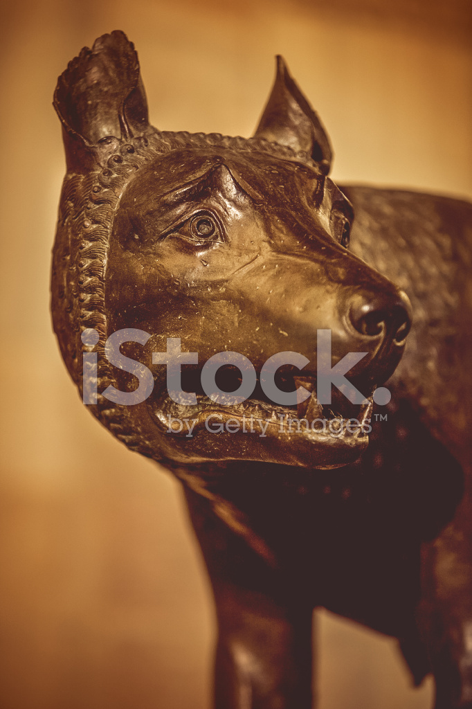 The Wolf Symbol Of Rome Stock Photos Freeimages