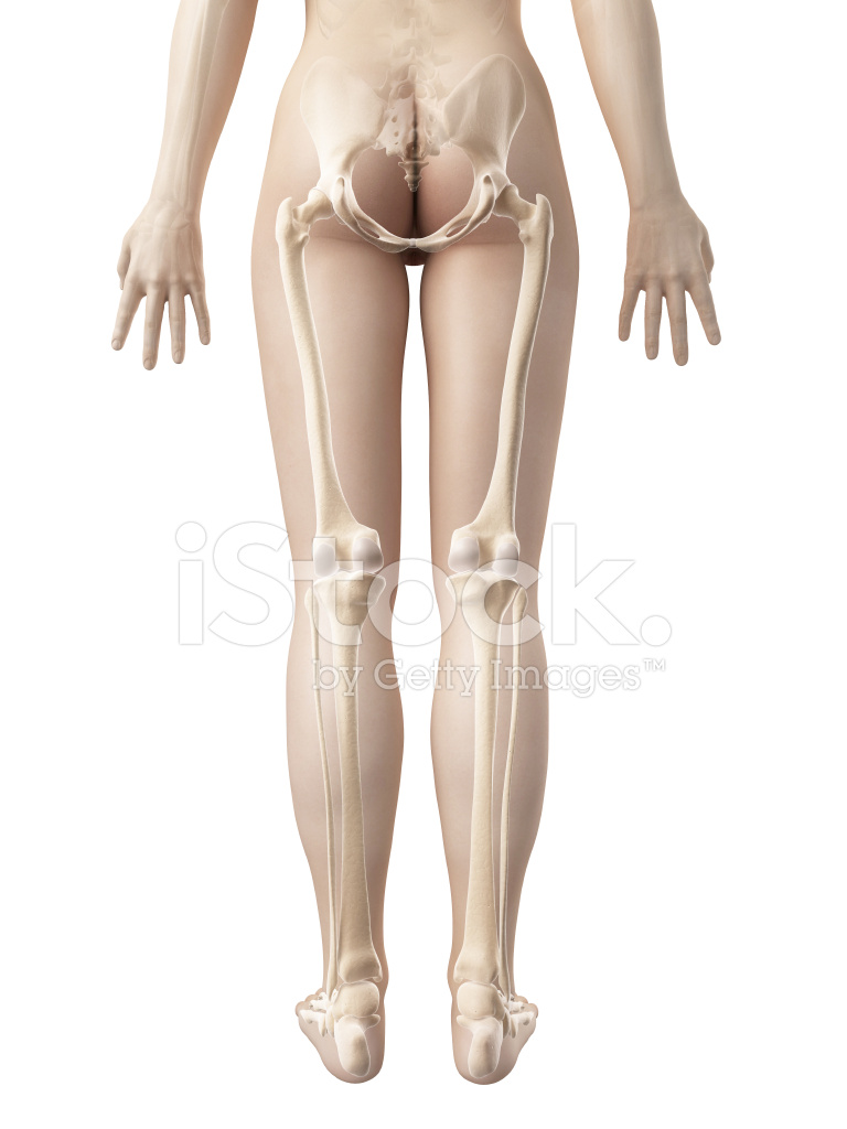 Free Female Legs Pictures 87