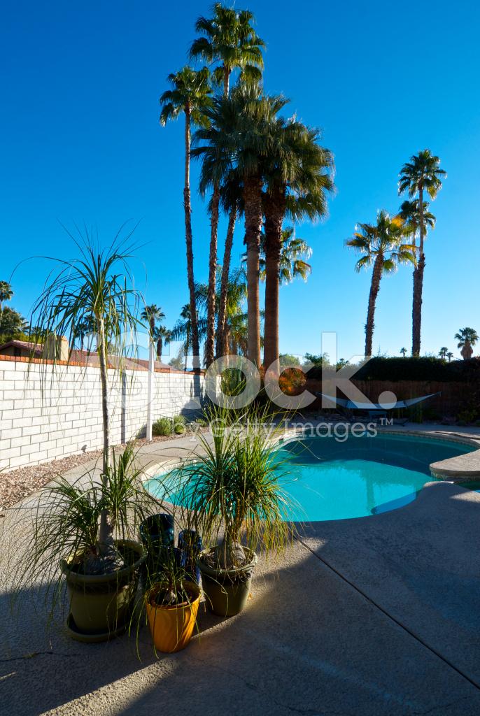 Hinterhof Pool Terrasse Palm Springs Nach Hause