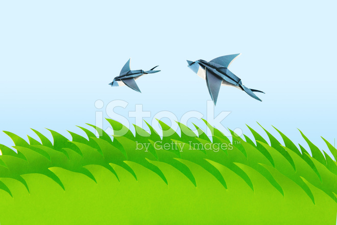 Premium Stock Photo of Green Field With Origami Swallows