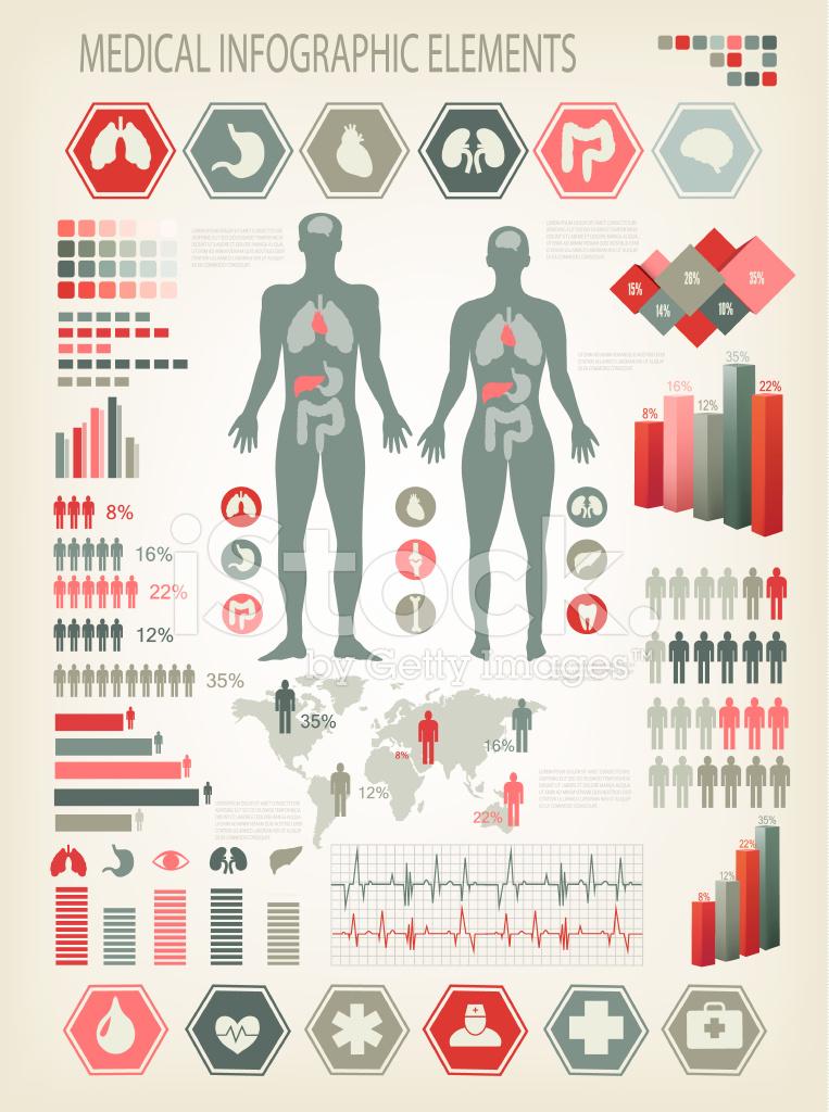 Elementos Médicos Cuerpo Humano Con Los Órganos Stock Vector ...