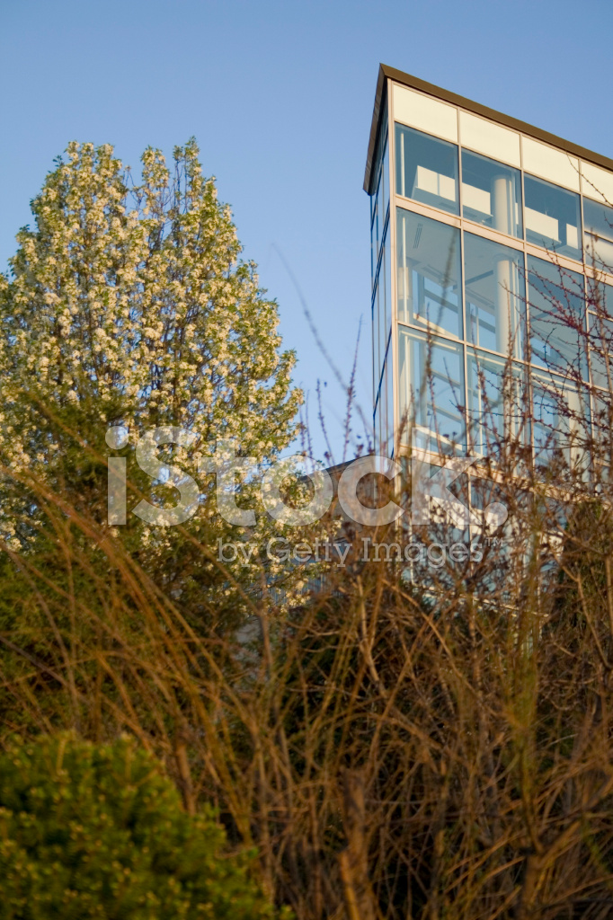 Glass building landscaping stock photos for Landscaping rocks windsor ontario