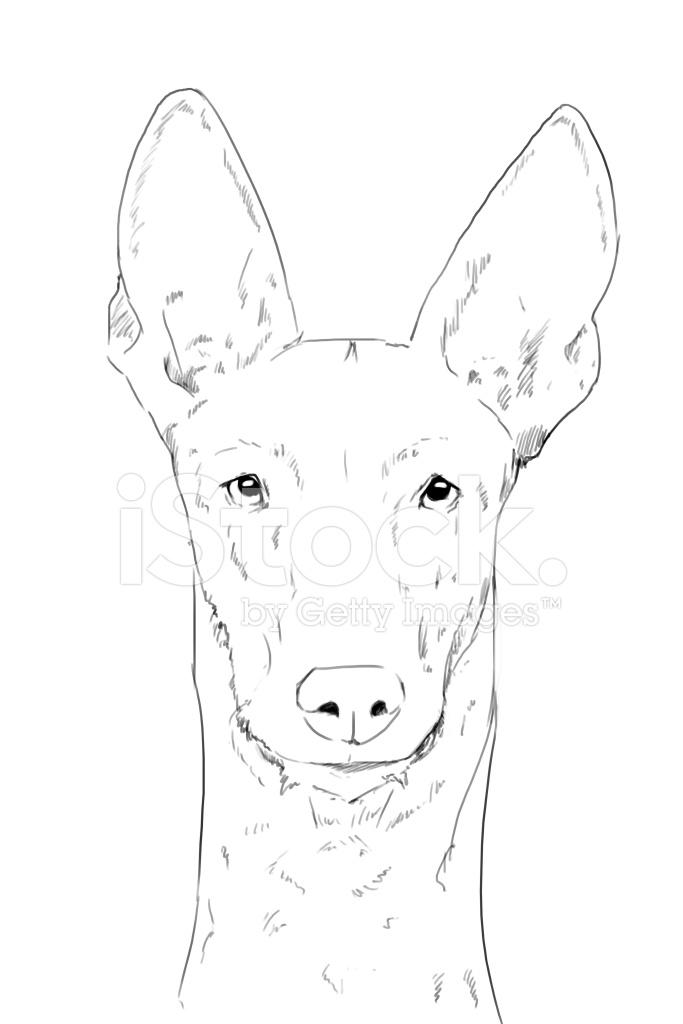 easy cartoon drawings of dogs