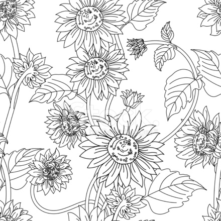 Black White Sunflower Garden Seamless Pattern Stock Vector