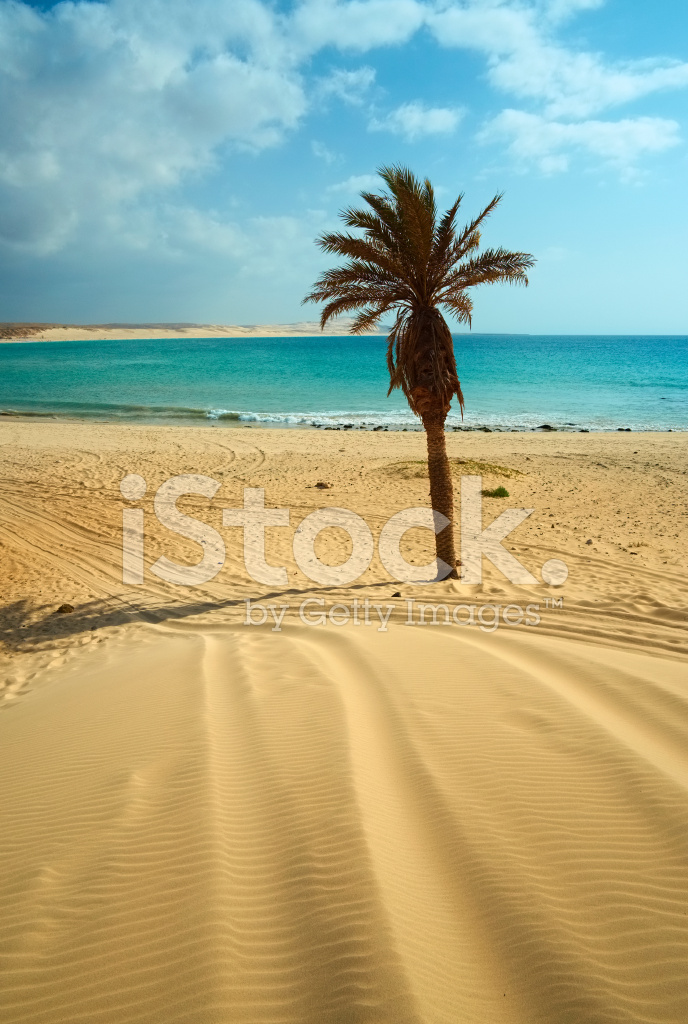Beach Of Boa Vista Cape Verde Stock Photos Freeimages Com