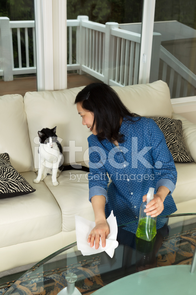 Mature Woman Smiling At Her Cat While Cleaning Stock Photos
