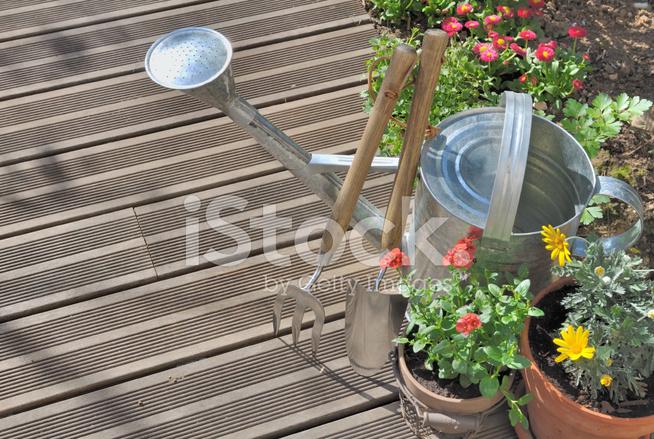 Jardinería En Una Terraza Fotografías De Stock Freeimages Com