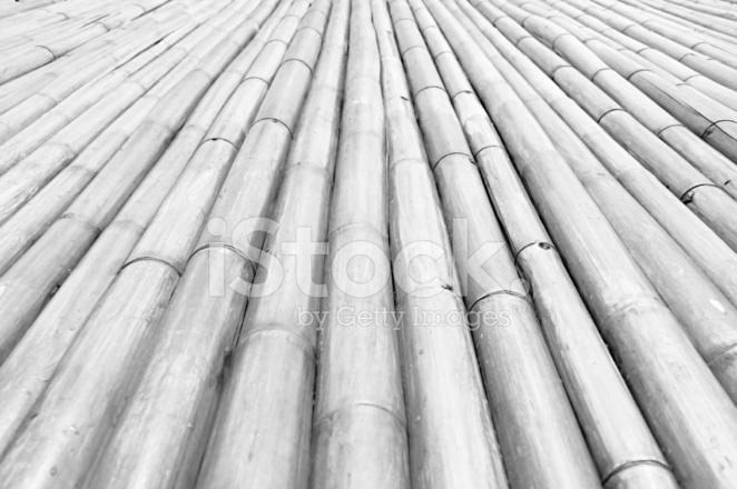 Monocromatico Perspectiva De Diminuicao De Talos De Bambu Seco - Bambu-seco