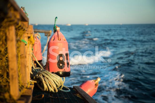 Lobster Buoy Stock Photos Freeimages Com