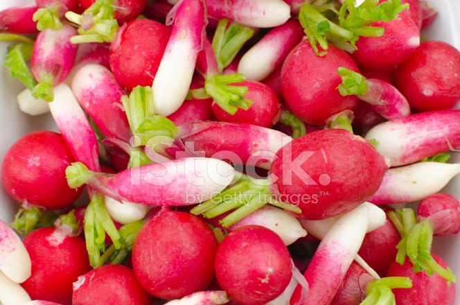 Red Radish Baby Food