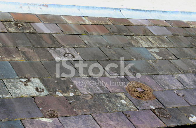 Image Of Old Purple Slate Roof Tiles And Lead Flashing Stock Photos