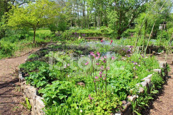 Image D\'ornement Jardin Potager / Jardin D\'herbes Aromatiques Avec ...