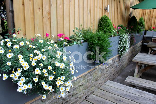 Bild Der Modernen Zink Troge Im Garten Bepflanzt Mit Blumen