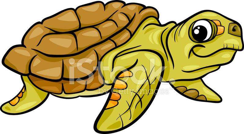 Deniz Kaplumbağası Hayvan Karikatür çizimi Stock Vector Freeimagescom