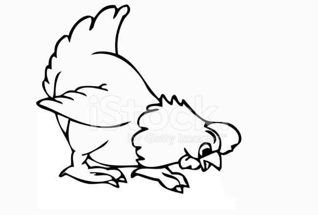 Cartone animato del gallo di ot stock vector