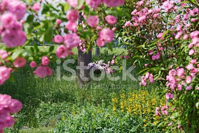 Jardin D\'ornement Photos - FreeImages.com