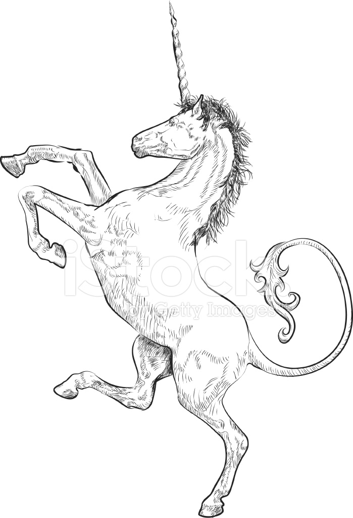 rampant unicorn stock vector