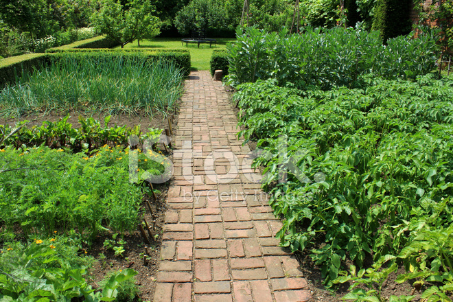Ornamental Vegetable Garden Image / Walled Kitchen Garden ...