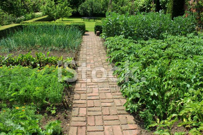 Ornamental vegetable garden image walled kitchen garden for Ornamental vegetable garden design