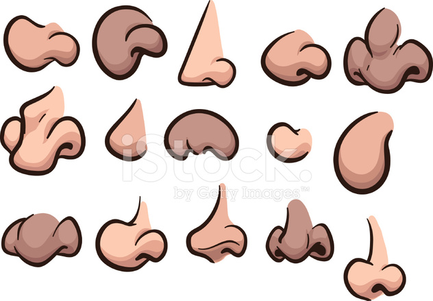 Cartoon Noses Stock Vector Freeimages Com