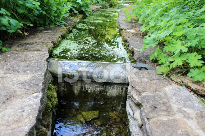 Pequeo Arroyo Artificial Hacia LA Cascada Estanque Jardines
