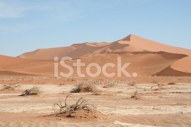Dunes Of Sossusvlei Big Daddy Namib Desert Namibia