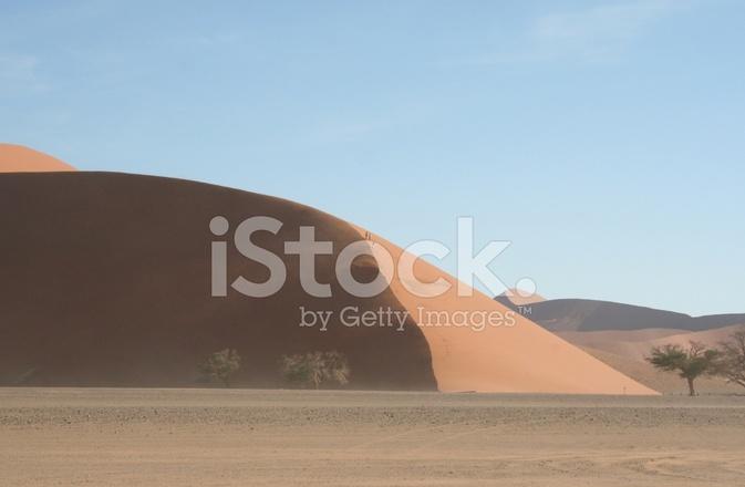 Dune 45 Dunes Of Sossusvlei Namib Desert Namibia Africa