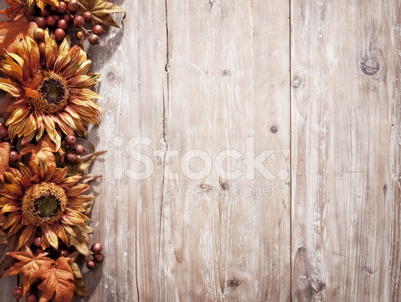 Premium Stock Photo Of Rustic Sunflower Border