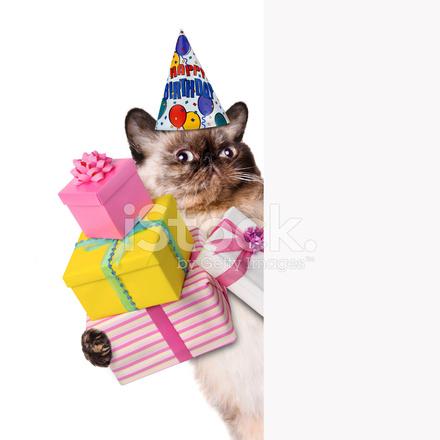 Verjaardag Stockfotos Freeimagescom