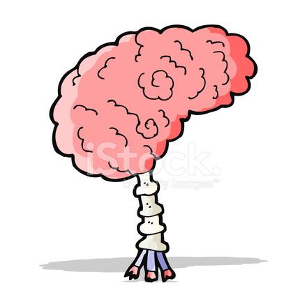 Cerebro DE Dibujos Animados fotografas de stock  FreeImagescom