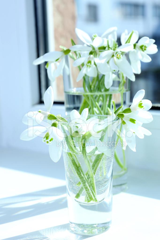Schöne Blumensträuße Schneeglöckchen IN Vasen Auf Fensterbank ...