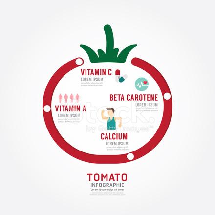インフォ グラフィック トマト健康概念テンプレート デザイン stock