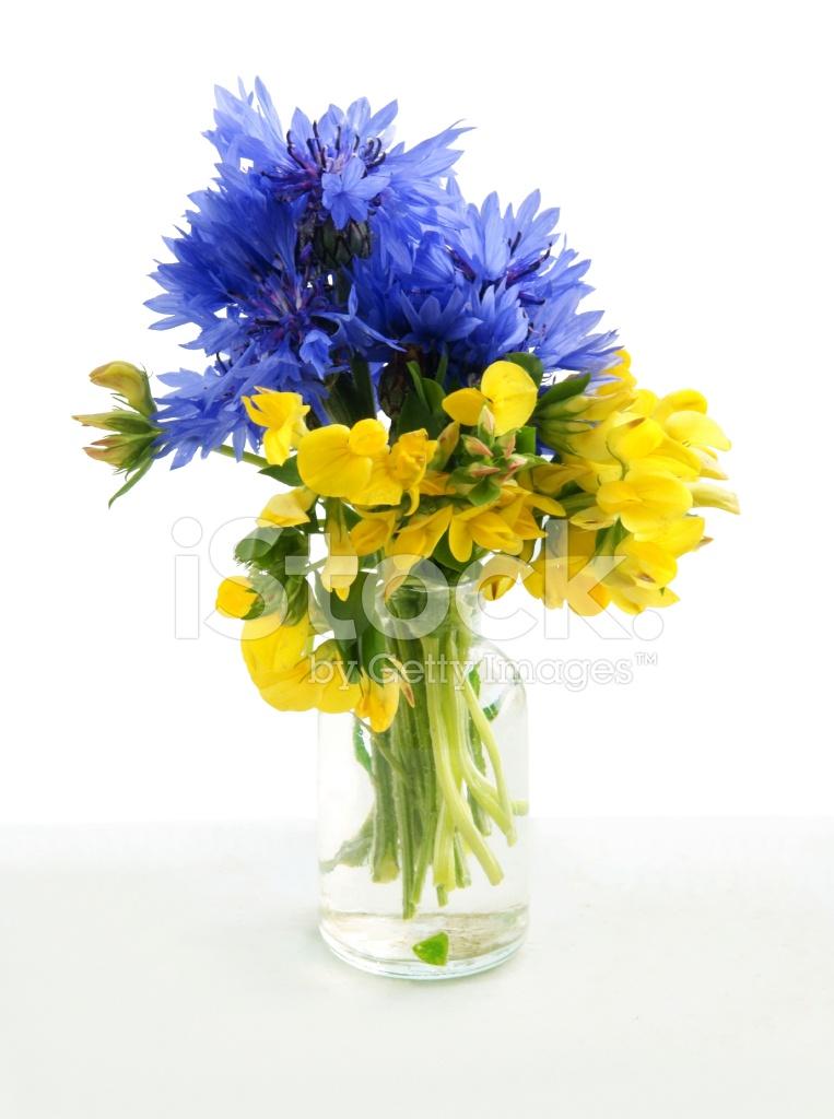 Blue And Yellow Flowers Like Ukrainian Flag Stock Photos