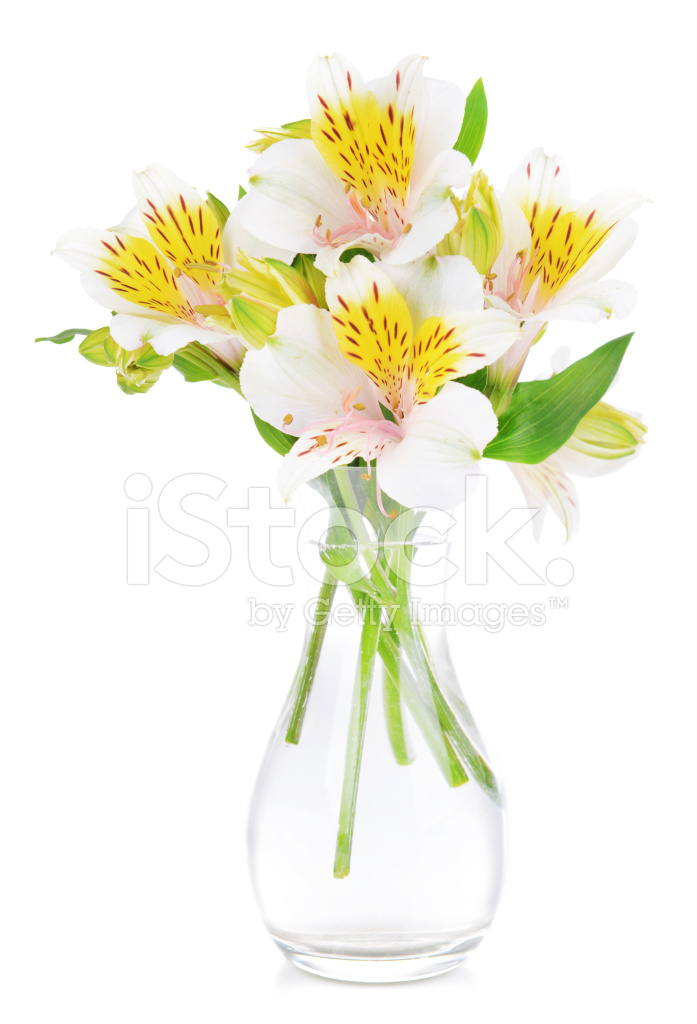Alstroemeria flowers in vase isolated on white stock photos alstroemeria flowers in vase isolated on white mightylinksfo