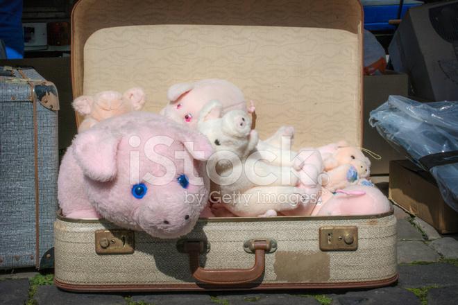 Fluffy Pigs