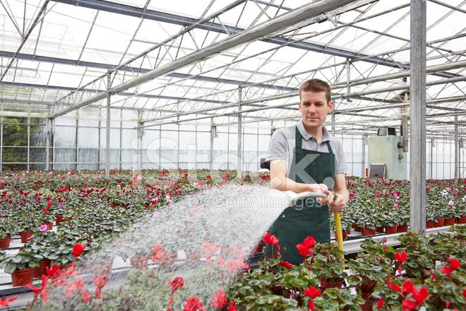 home based plant nursery business plans