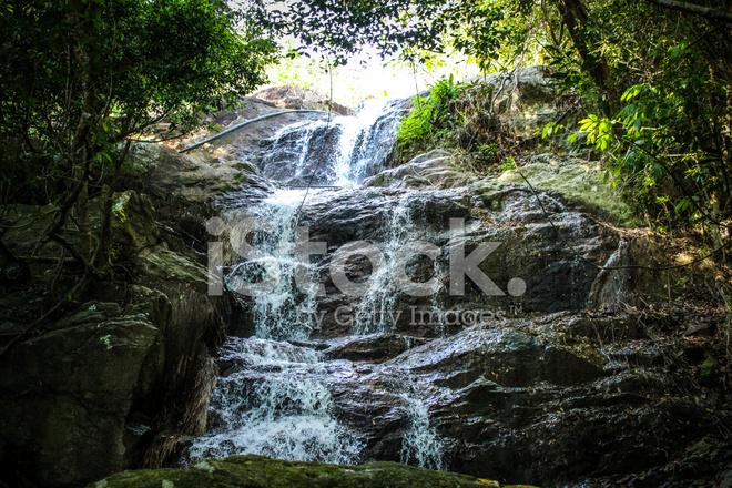 Premium Stock Photo Of Wasserfall MIT Pool Im Tropischen Dschungel, NA  Muang Koh Samui