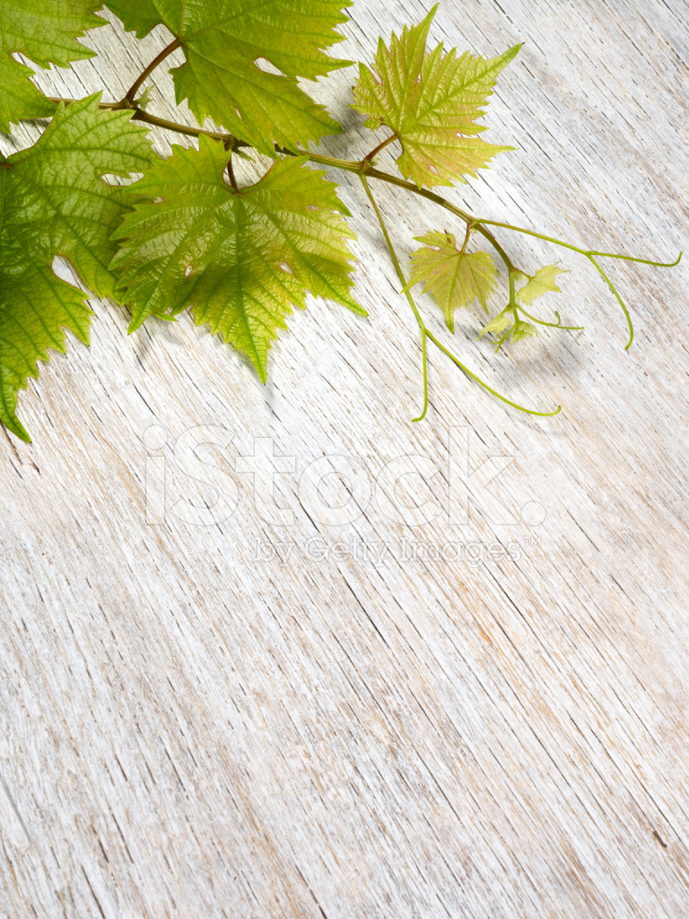 Grape Leaves On Wooden Background Stock Photos Freeimages Com