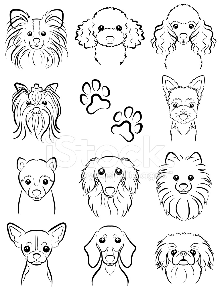 Line Drawing Baby Face : Hund linie zeichnen stock vector freeimages