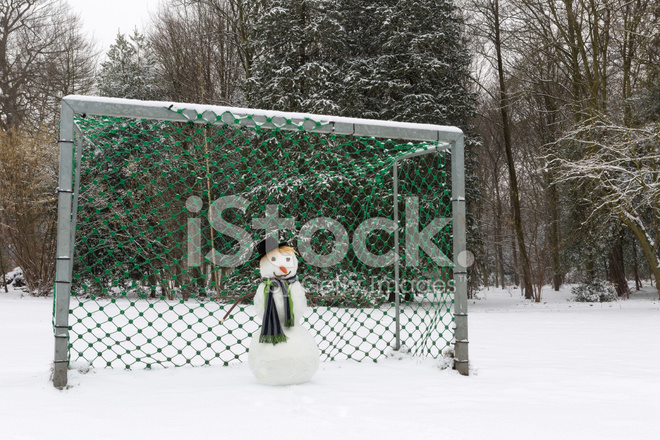 Image result for goalie covered in snow